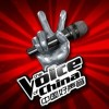 How 'The Voice of China' rose to success (China.org.cn)