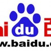 Baidu to Set Up Brazil Office (Beijing Times)