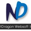 NetDragon Websoft Inc. Announces First Quarter 2013 Financial Results